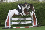 Brookhead Show Jumping